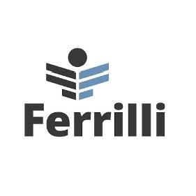 Ferrilli
